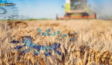 How Blockchain industry can revolutionize the Agricultural Supply Chain