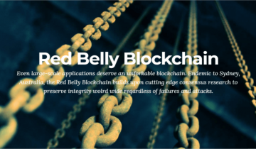 Newly Launched Red Belly Blockchain Hits 30,000 Transactions per Second