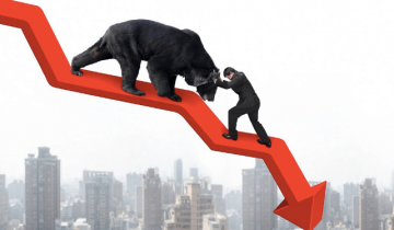 Where to Put Your Money in a Bear Crypto Market?