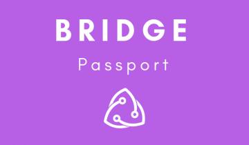 Bridge Protocols Passport Chrome extension undergoes public testing