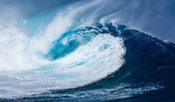 WAVES Has Risen 72% so Far This Month, Bucking the Bearish Trend