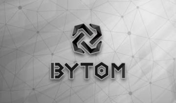 Cons and Pros of Bytom Token