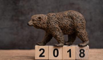 Year of the Bear: Making Sense of the Bitcoin, Stock Market Downturns