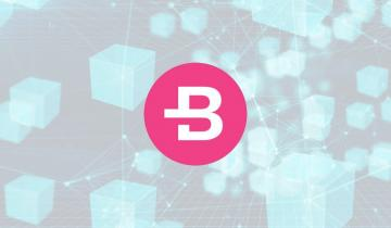 Bytecoin Now Offers Auditable Coins For Public Technology Applications — Can the Buyers Hold BCN Above the Lower Boundary of the Trading Range?
