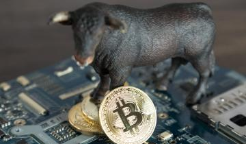 Bitcoin Bounces to Above $3,700 Leading the Crypto Markets to Surge