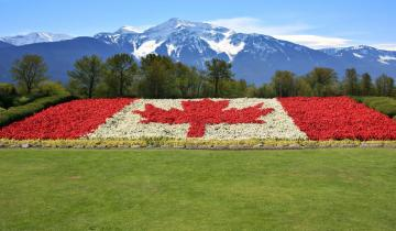 First Canada Crypto Law Firm Launched