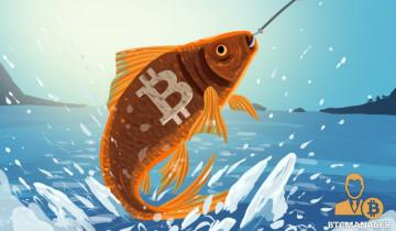 Earn Crypto Part 2: Incentivized Social Media