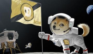 Vitalik Buterin Holds Doge, Zec, Bitcoin Cash and Even Bitcoin, 80% ETH