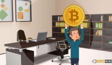 Bitcoin Veteran Peter Todd Calls Block Size Reduction a Dumb Idea