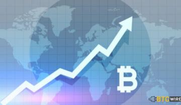 How Bitcoin Adoption is on the Rise Despite Bear Markets