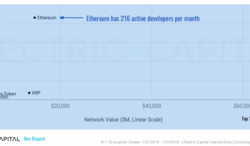 Ethereum Has Highest Number of Blockchain Protocol Developers Says Report