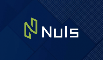 What Is NULS? | A Guide to the Modular Blockchain