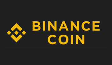 Could Binance (BNB) Coin Possibly Reach 100$ Valuation This Year?