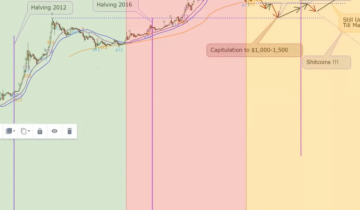 Has Bitcoin Bottomed and Where is It Headed Next? Leading Trade Analysts Weigh-in