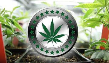 Blockchain Firm To Start New Medical Marijuana Case