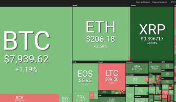 Some Major Coins Still Making Gains, Others Trade Sideways as Oil Reports Mixed Signals