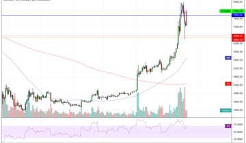 Bitcoin Price Retests $8,000 Following 21.37% Drop – Is $11,000 Next?