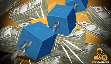 Bicameral Interconnected Investments: A New Take on Strategic Blockchain Investing