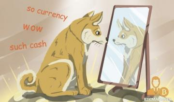 DOGE Moonshot: Fundamentals and Technicals Signal Uncertainty