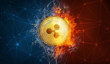 Is Ripple Decentralized or Not? Blockchain Expert Ends the Debate