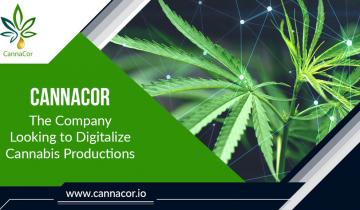 CannaCor: The Company Looking To Digitalize Cannabis Productions