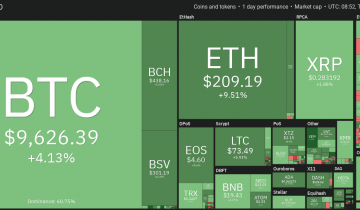 NEM (XEM) Gains 25% as Altcoins Follow Bitcoins 30% January Surge