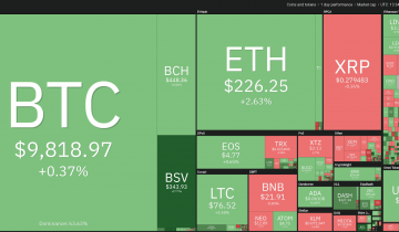 BSV and BCH Are Surging With Their Halvings a Month Before Bitcoin