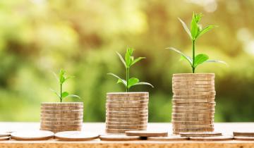 VeChain, MonaCoin, Bitcoin Cash: MONAs YTD surpasses that of BCH
