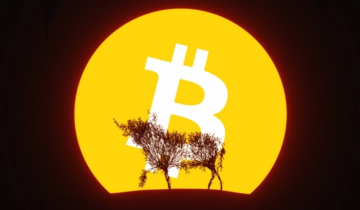 Bitcoin (BTC) Price Enters 'Hope Zone,' Signaling Start of Another Bull Market