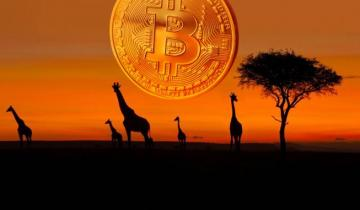 Bitcoin Adoption In Full Swing As Bitcoin Weekly P2P Volumes Set Record Highs Across Sub-Saharan Africa