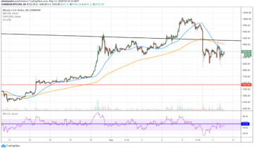 Bitcoin Plunges as Halving FOMO Comes to End; Whats Next for Crypto?