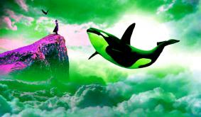 Worlds Most Outspoken Bitcoin Whale Says Key Crypto Catalyst Is a Myth