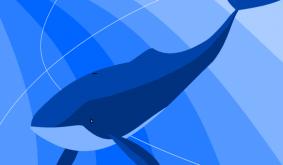 BTC whales active across 100k wallets, Glassnode suggests