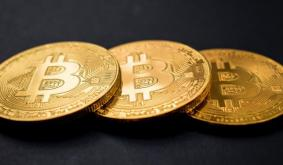 Bitcoin has produced almost 440 altcoins since its origin