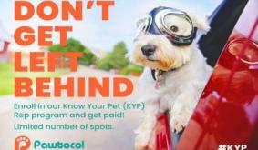 Pet-Based Company Pawtocol Launches a Blockchain Gig Economy