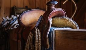 Saddle Raises $4.3M for Slippage-Free DeFi Trading