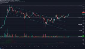 Bitcoin Cash, Tron, Elrond Price Analysis: 04 March