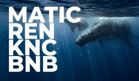 MATIC, REN, KNC, BNB Whales Definitely Bought Latest Dip, Here's Why