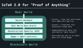 IoT Privacy Company IoTeX Is Envisioning the Future of NFTs