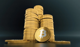 Will Bitcoin Gambling Continue to Be Popular in Todays Market?