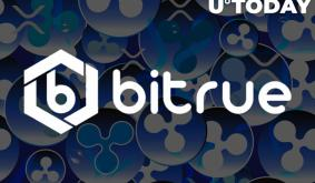 XRP-Centric Bitrue Lists More Leverage Tokens: Chainlink (LINK), Polkadot (DOT) Onboard