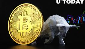 Bitcoin Is Still In Bull Market: CryptoQuant Report
