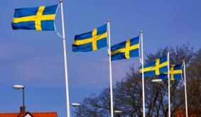 Swedens Government Forced to Return $1.5M in Bitcoin to Drug Dealer: Report