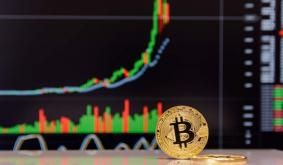 ARK Invest CEO: Bitcoin In Capitulation Phase, Still Set For $500k