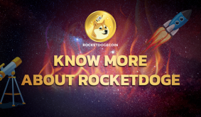 RocketDoge – Learn from the Best and Further
