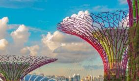 Binance Changes Offerings in Singapore as Regulatory Woes Continue