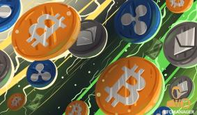 Which Altcoins Should You Invest in?