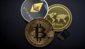 Money Lion Is Opening a New Crypto Division