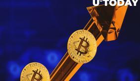 Three Arrows Capital Co-Founder Says Bitcoin Dominance Is Irrelevant
