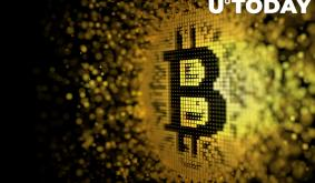 Steve Hanke Calls Bitcoin Highly Speculative Asset with Fundamental Value of Zero